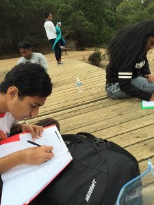 REACH participants writing in journals