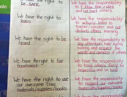 Natalia Anciso demonstrates the positive impact of using the arts, play and teaching of the UDHR with second graders