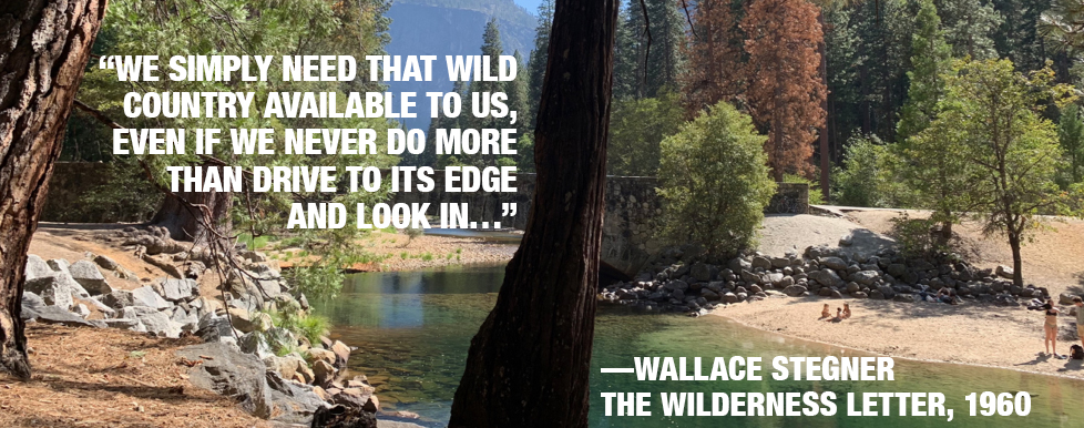 The Very Idea Of Wilderness – Why This Matters